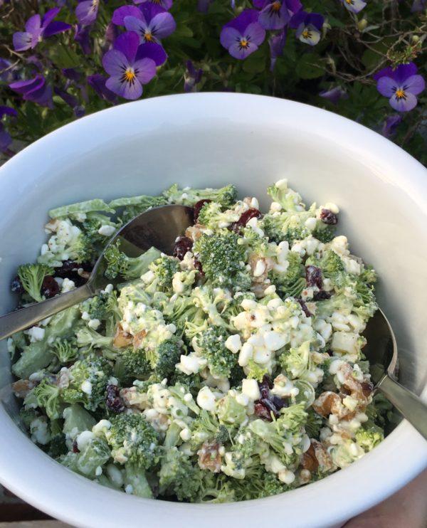 Broccolisalat opskrift med springløg (forårsløg), hytteost, valnødder og tranebær, SuperOtium