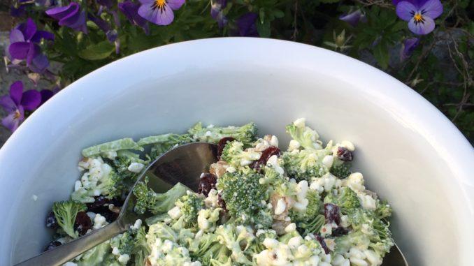 Broccolisalat opskrift med forårsløg, hytteost, valnødder og tranebær, Hjertesund opskrift, madplan, SuperOtium